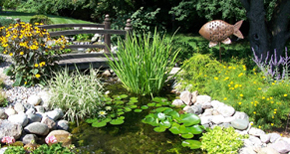 Garden Ponds & Pondless Waterfalls